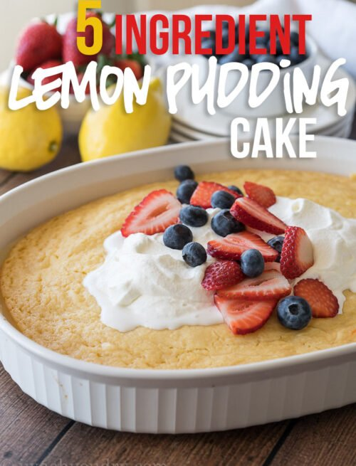 Need a quick dessert? This 5 ingredient Lemon Pudding Cake is where it's at! So easy and perfectly delicious!