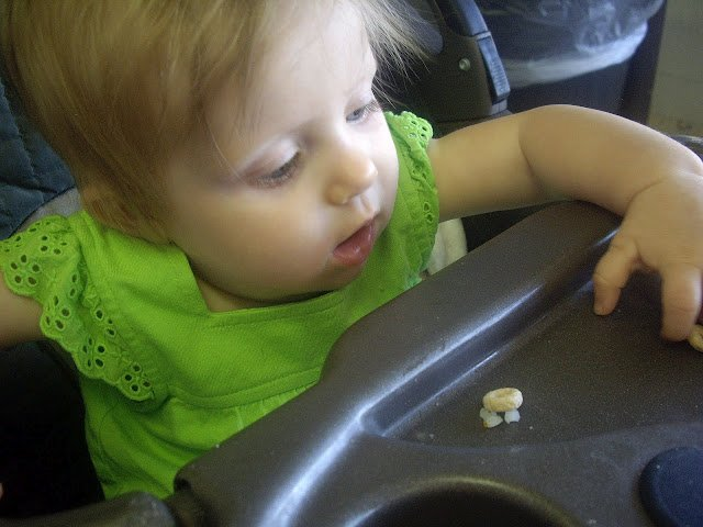 A baby eating Cheerios off her tray.