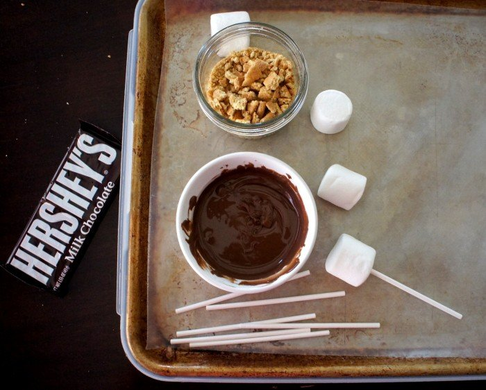 A pan with needed supplies to make S\'mores marshmallow pops
