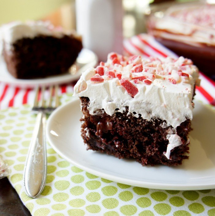 A close up of a piece of chocolate cake on a plate, with white frosting and crushed peppermint on top