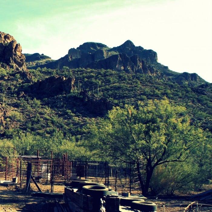 Quarter Circle U Ranch in Apache Junction, Arizona