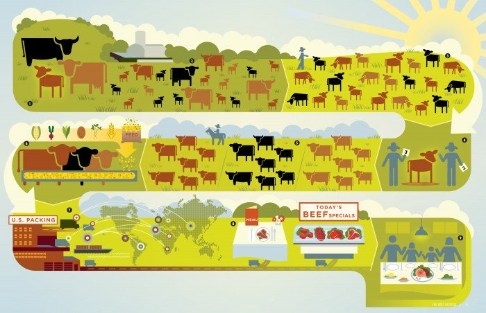 A graphic that demonstrates how a cow gets from the ranch to my plate