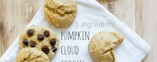 3 Ingredient Pumpkin Cloud Cookies with Chocolate Chips