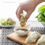 Asian Chicken Lettuce Wrap Spring Rolls