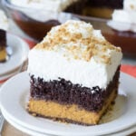 Chocolate Pumpkin Magic Cake
