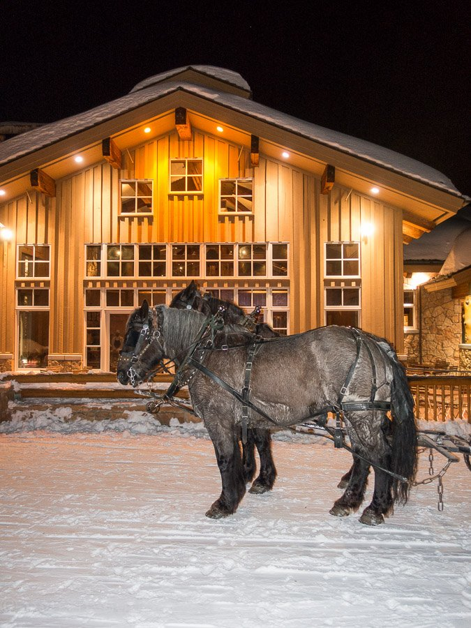Horse drawn carriage rides offered at Fireside Dining at Deer Valley Resort in Park City Utah!