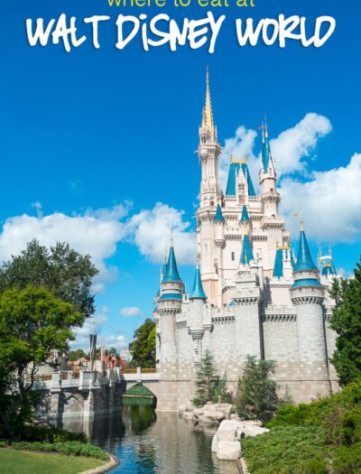 There are a bunch of great tips on where to find some really good eats in this guide of What to Eat at Walt Disney World!