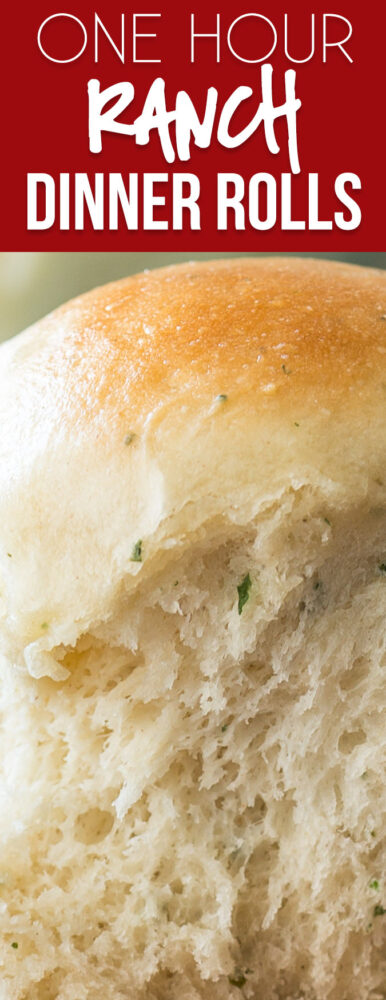 These One Hour Ranch Dinner Rolls are filled with a subtle and delicious ranch flavor and hot and ready in just 1 hour!