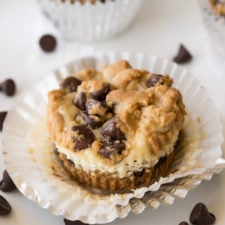 cupcake sized cheesecake with chocolate chips