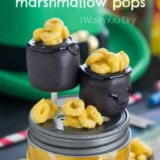 A close up of chocolate covered marshmallow pops