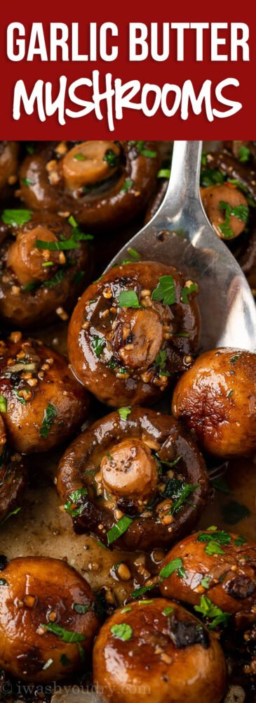 YUM! This Garlic Mushrooms Recipe is a quick and easy side dish that's ready in just 15 minutes or less!