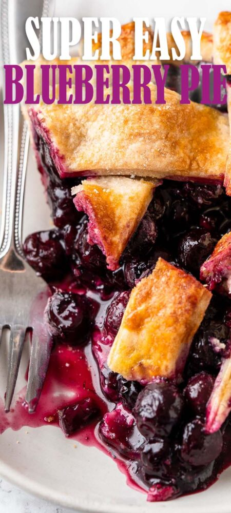 pie with blueberry filling