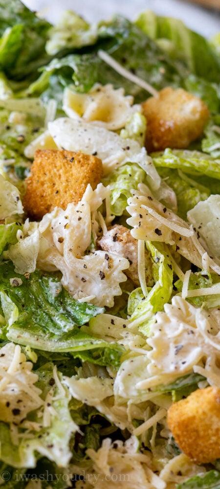 Caesar Pasta Salad Recipe