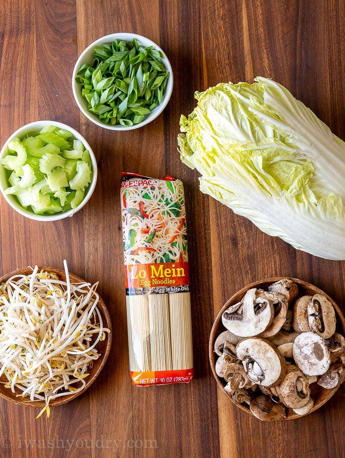 Vegetable Lo mein ingredients with noodles