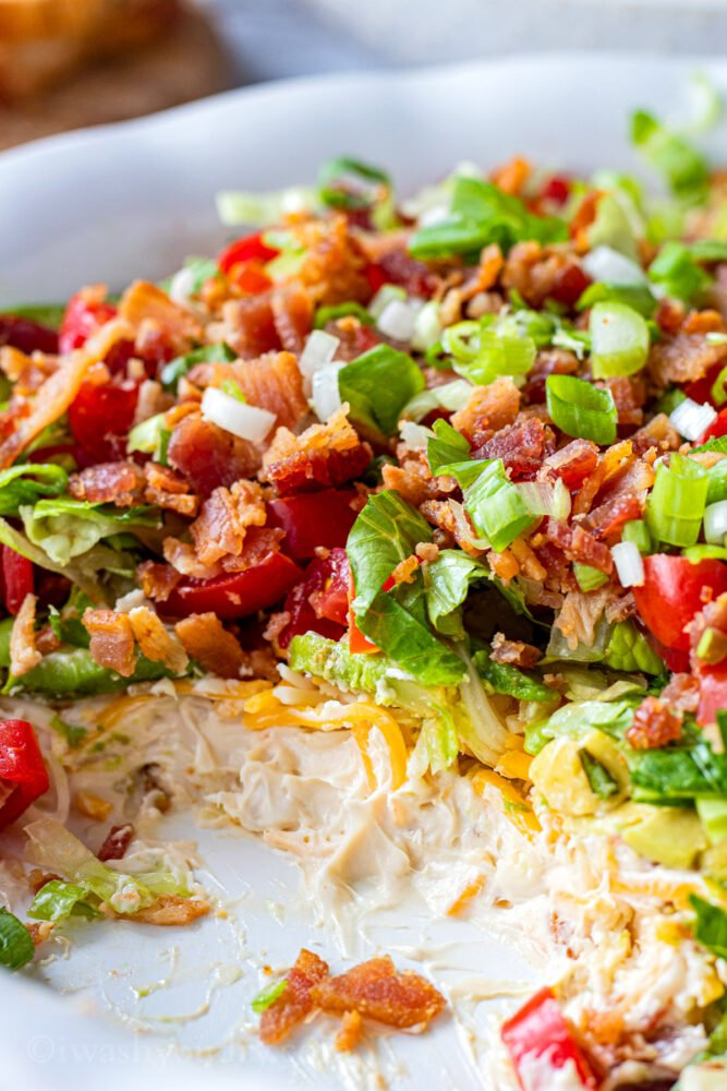 white dish filled with bacon, lettuce, tomatoes, green onion, cheese, cream cheese base, and avocado.